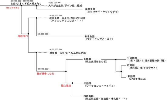 お魚図鑑 [更新済み]550