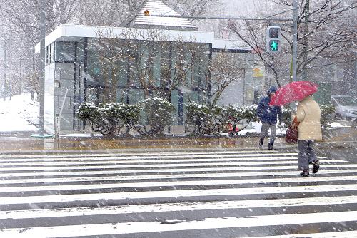 2015年 3月 冬