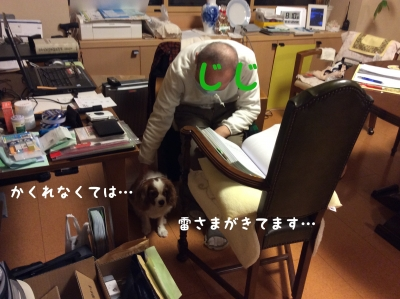 20150318204106cc2.jpg
