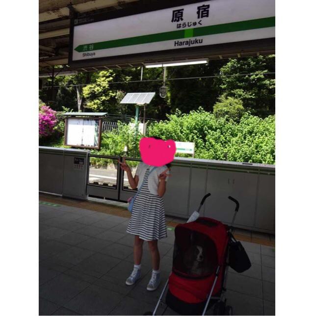 201505120819323b8.jpg