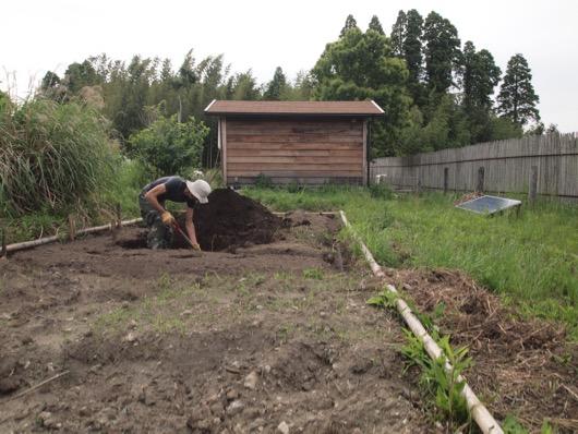 garden20150523 - 2