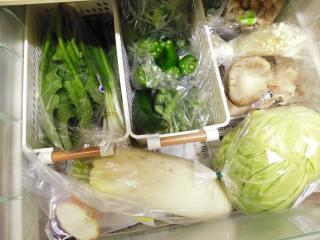 冷蔵庫整理収納 野菜入り