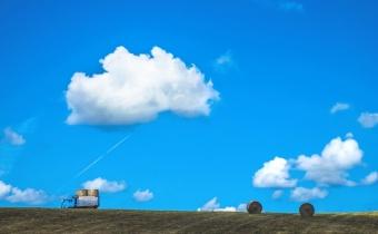 青空と干草