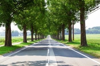 真直ぐな道路