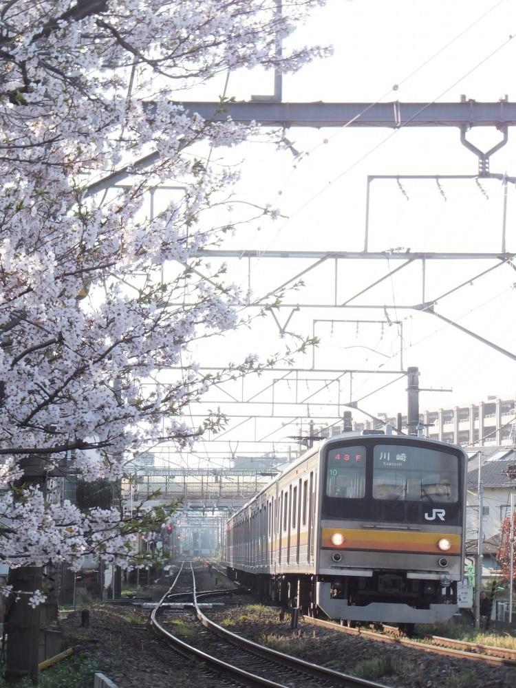 s_DSCF13460.jpg
