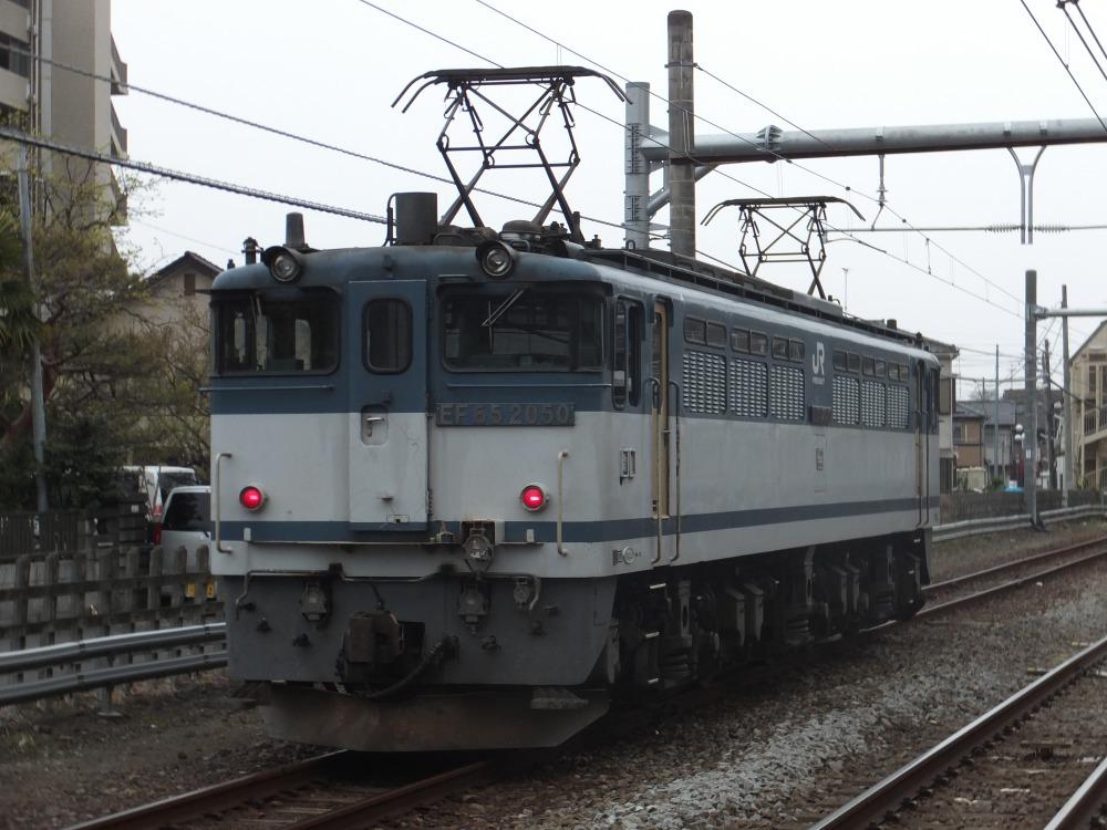 s_DSCF13651.jpg
