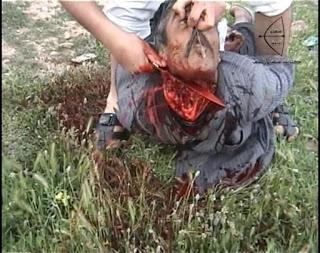 Syria 7