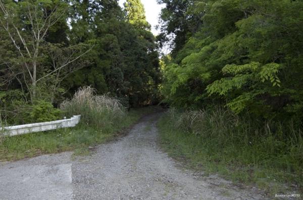 さわやか房総横断林道