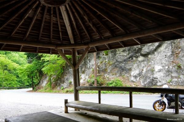 chichibu_liaison08.jpg