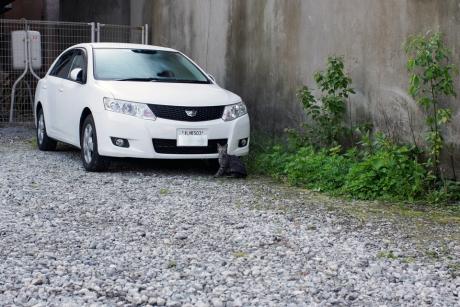 2015hokkaido_65.jpg