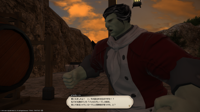 s_ffxiv_20150725_120249.png