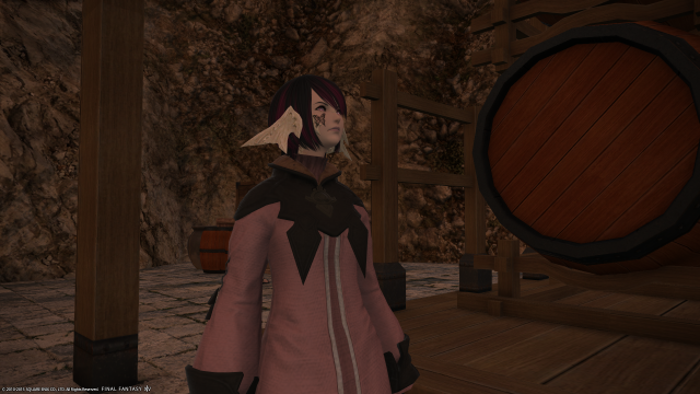 s_ffxiv_20150725_120253.png