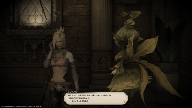 s_ffxiv_20150726_211654.png