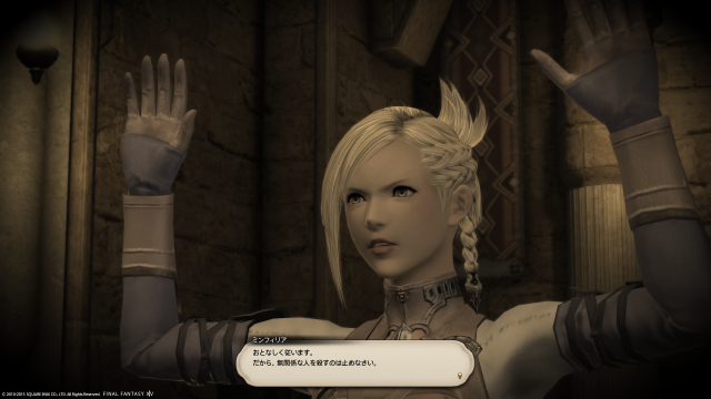 s_ffxiv_20150726_211830.png