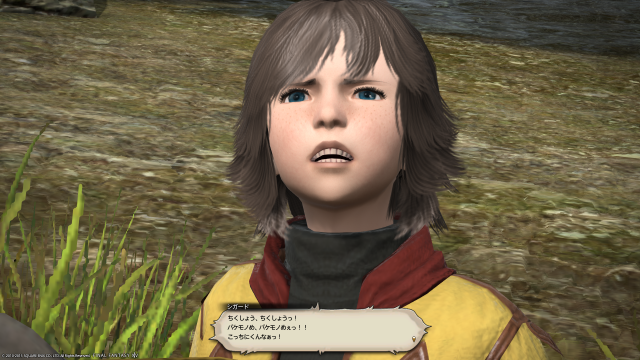 s_ffxiv_20150729_112846.png