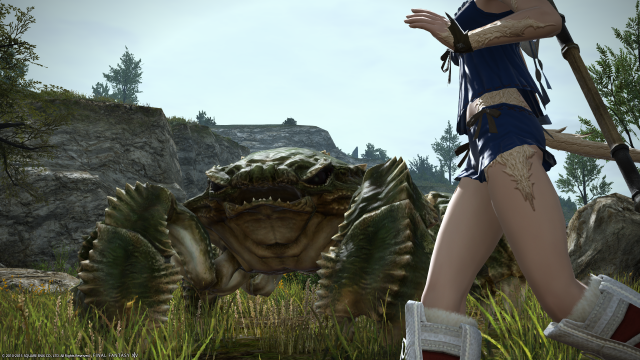 s_ffxiv_20150729_112849.png
