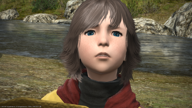 s_ffxiv_20150729_112901.png