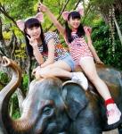 HKT48 矢吹奈子 田中美久 セクシー 猫耳 ショートパンツ 太もも 股間食い込み 13歳 中学生アイドル 高画質エロかわいい画像9308