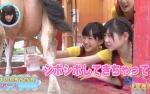 HKT48 田島芽瑠 AKB48 西野未姫 牛の乳搾り 握り ミルク 地上波キャプチャー 高画質エロかわいい画像9397