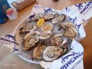 Key West Pinchers Crab Shack Florida Oysters