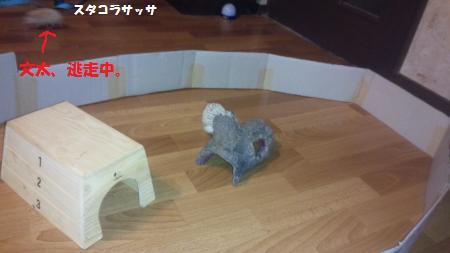 20150606-6[1]_convert_20150608133504