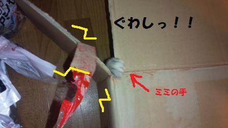 20150613-8[1]_convert_20150615132808