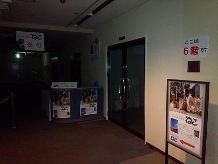 DSC_5174.jpg
