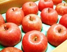 りんご 写真