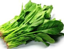 白菜の漬物とほうれん草の塩昆布和え 材料②  写真
