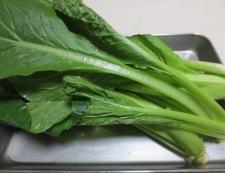 小松菜 材料①
