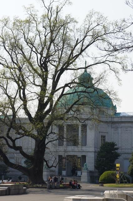 上野国立博物館 ⑩