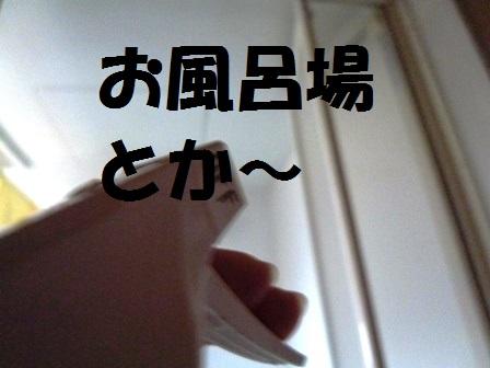 004P1240129.jpg