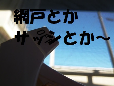006P1240131.jpg