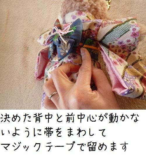 a007P1240268.jpg