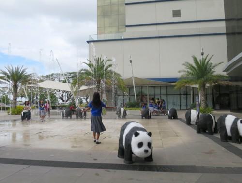 sm panda032715 (10)