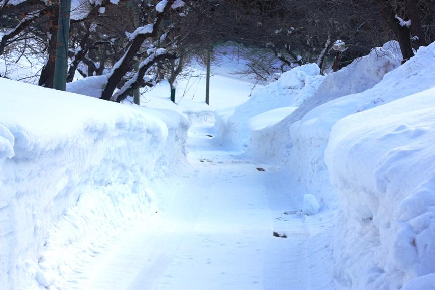 20150201雪道