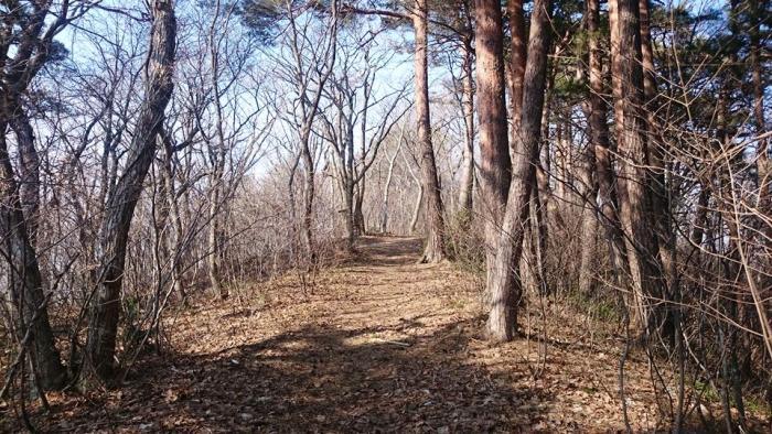 20150328浅虫森林公園