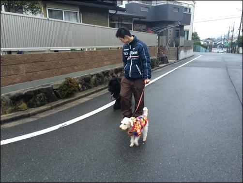 20141228__IMG_6355.jpg