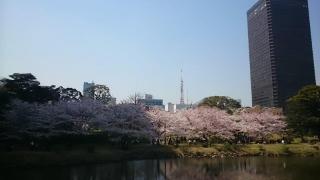 池をぐるりと回って反対側から。東京タワーとWTC。