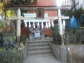 F1000498南栄八幡神社