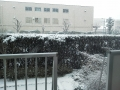 F1000580雪