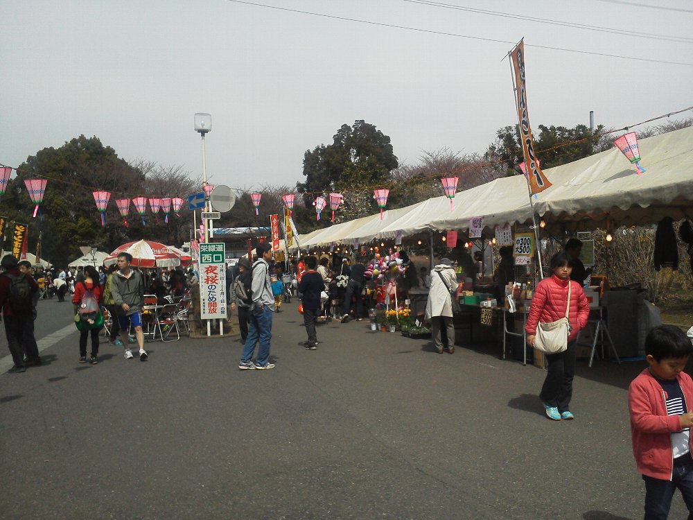 F1000701栄緑道桜祭り