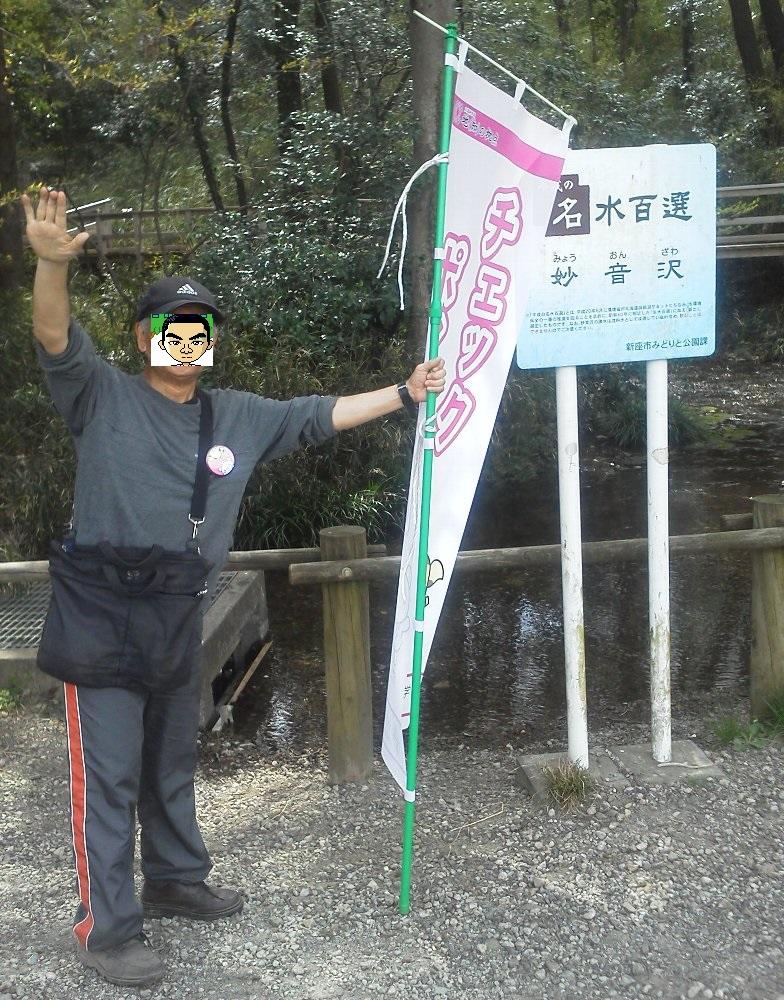 F1000700栄緑道桜祭り黒目川ウォーキング顔隠し