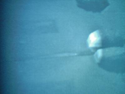 DSCN1344.jpg