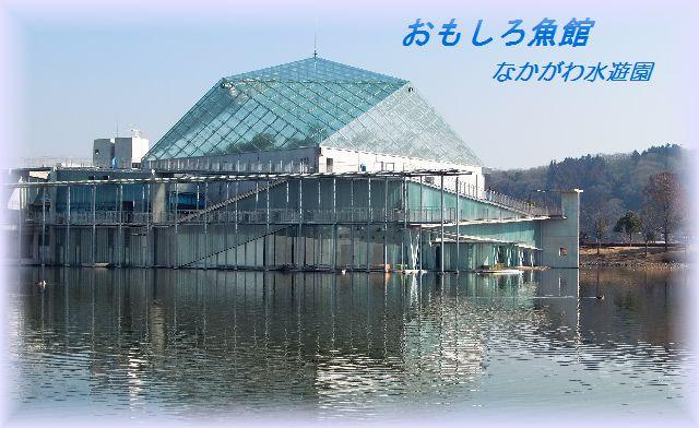 おもしろ魚館全景