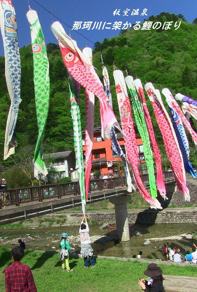 奈川に架かる鯉のぼり