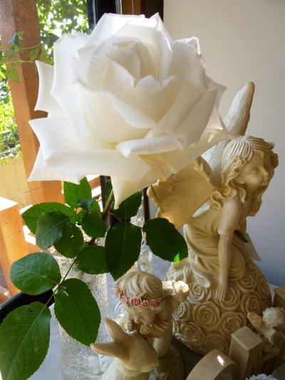 ブログ http://image.rakuten.co.jp/baranoie/cabinet/ikou_20090915_002/01743903/imgrc0064024915.jpg