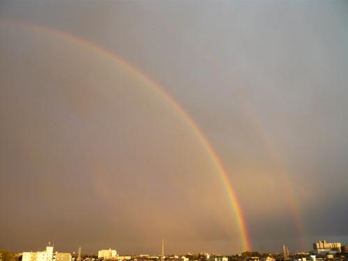 ブログ 虹1