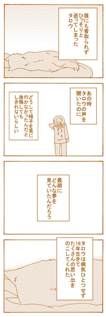 kototaro12.jpeg