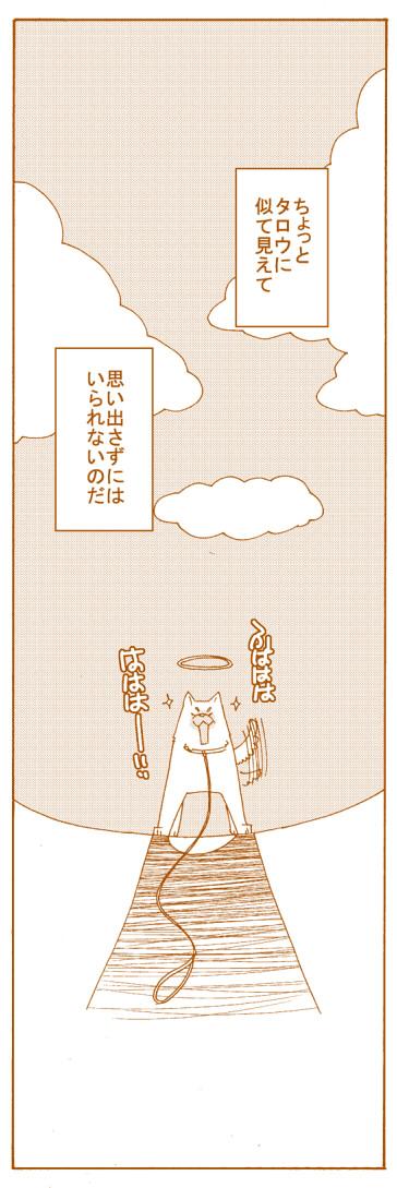 kototaro14.jpg